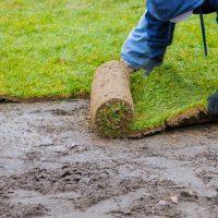 new-lawn-rolls-fresh-grass-turf-ready-be-used-gardening